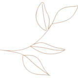 imagen-planta-masia-mas-coll
