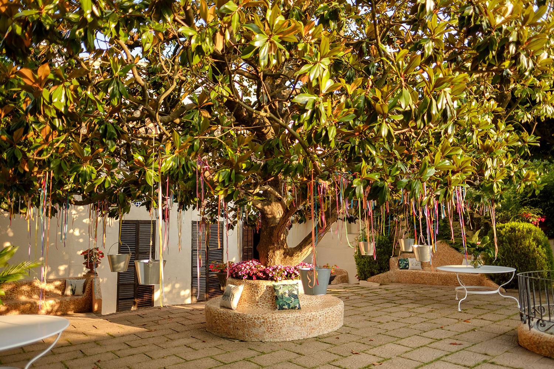 Jardín Magnolio en Masia Mas Coll | Espacio para Bodas en Alella - Barcelona